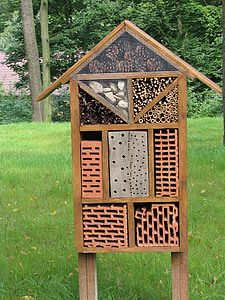 40 things to do – 11: Make a bug house