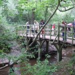 40 things to do – 12: Play Pooh Sticks